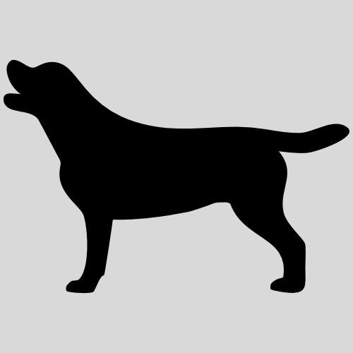Labrador Hündin - Männer Premium T-Shirt