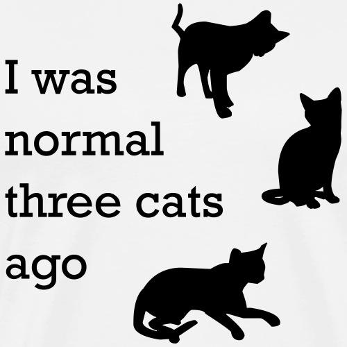 i was normal 3 cats ago - Männer Premium T-Shirt