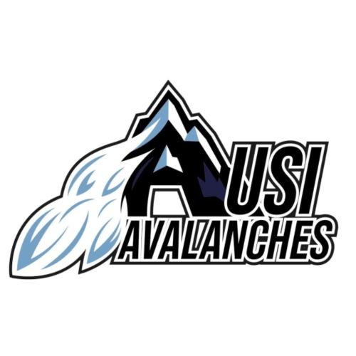 USI Avalanches white - Männer Premium T-Shirt