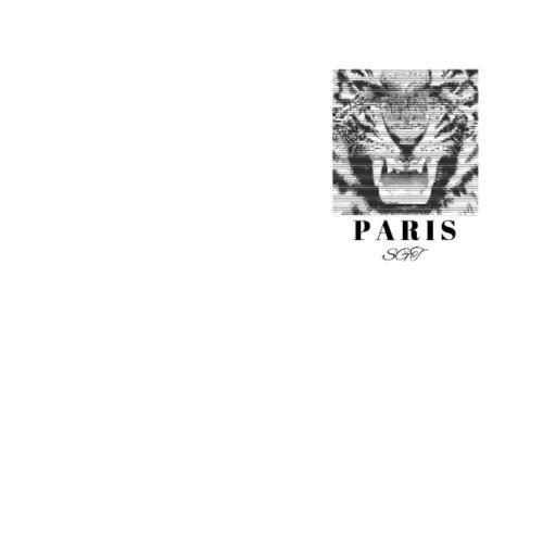 SGT x Paris - Tiger - Men's Premium T-Shirt