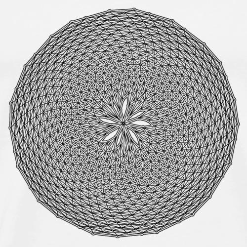 Fibonacci web with spirals - Men's Premium T-Shirt