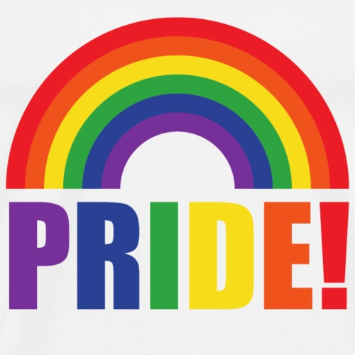 Pride Regenbogen   LGBT   Geschenkidee - Männer Premium T-Shirt