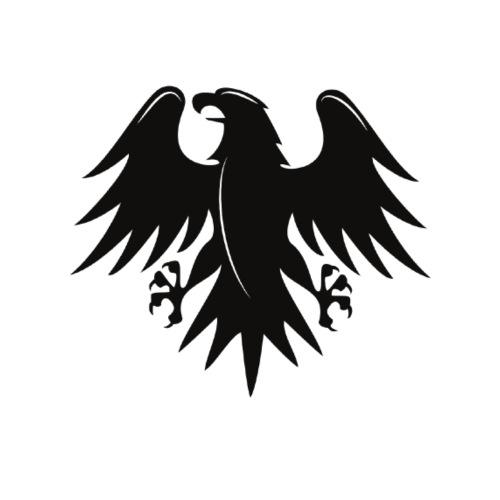 Aigle noir motif