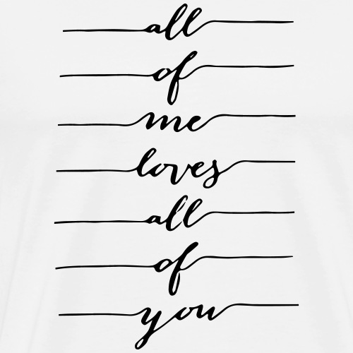 Me and You Spruch - Männer Premium T-Shirt