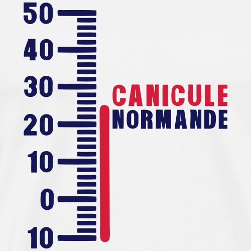 thermometre canicule normande humour - T-shirt Premium Homme