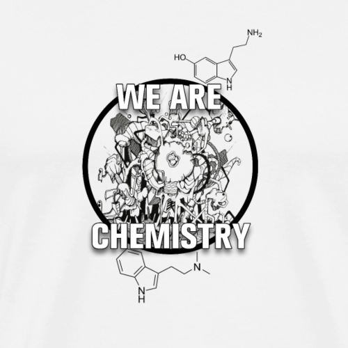 We_are_chemistry - Männer Premium T-Shirt