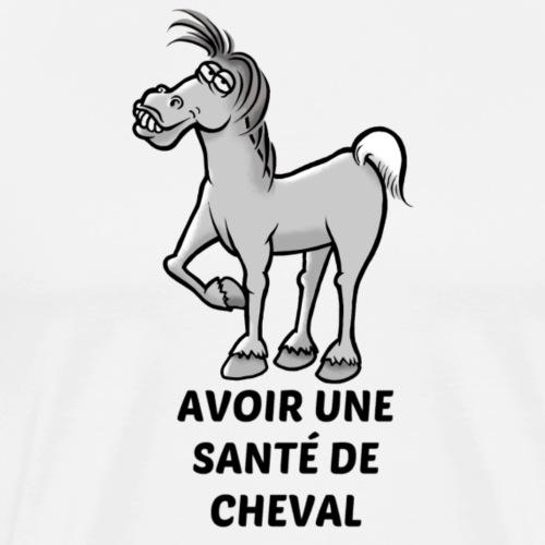 Une santé de cheval