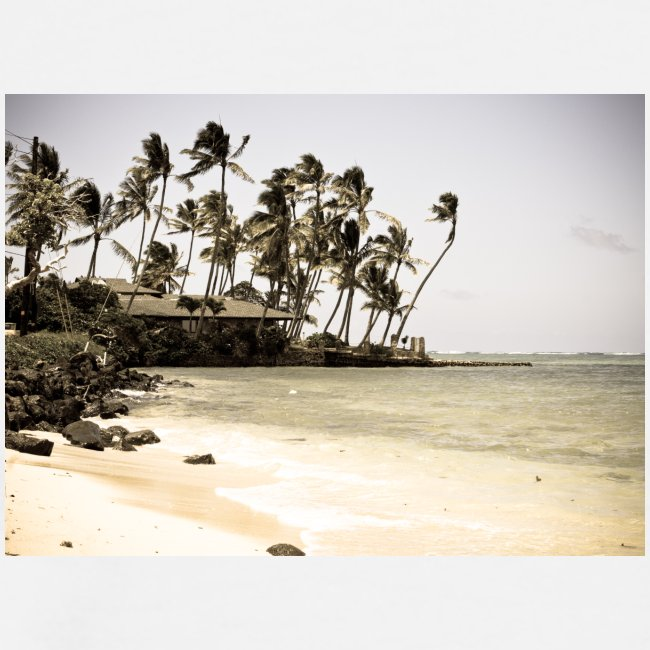 ISLAND STYLE 01-07-jpg