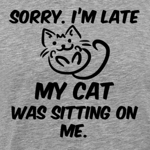 In late my cat was sitting on me black - Men's Premium T-Shirt