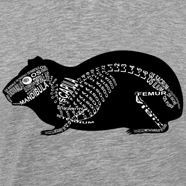 wort-anatomie | Meerschweinchen-Skelett - Männer Premium T-Shirt