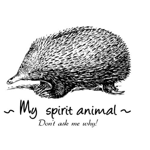 Mon animal totem est l'Echidné. - T-shirt Premium Homme