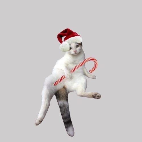 Fur Christmas with Mimi - T-shirt Premium Homme