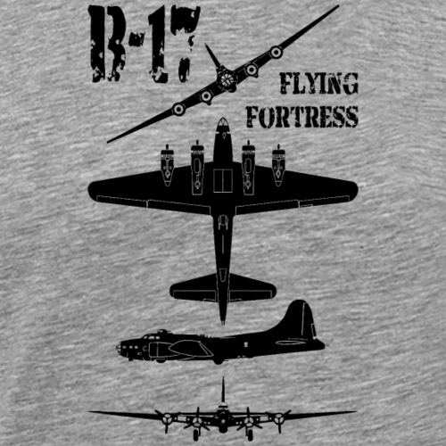 AVM WWII B-17 Flying Fortress
