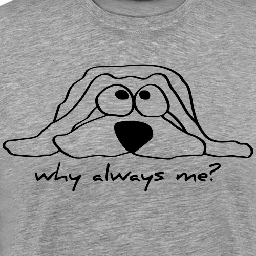 Dog - why always me?