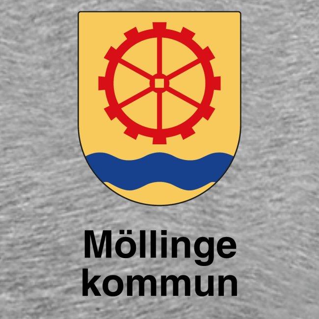 Möllinge kommun