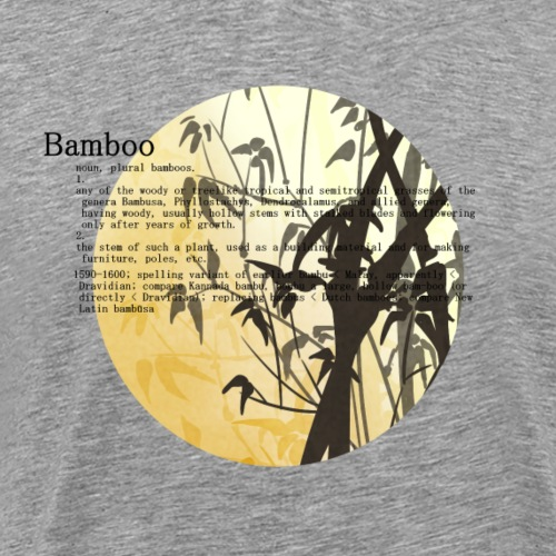 Bamboo - Premium-T-shirt herr