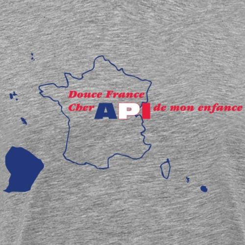 API France - T-shirt Premium Homme