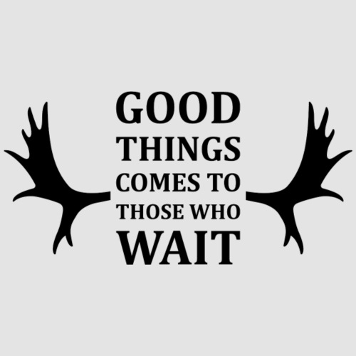 Good things comes to those who wait