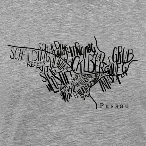 Passau Stadtteil-Karte - Männer Premium T-Shirt