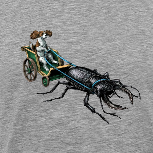 King Charles Spaniel with Stag beetle steed