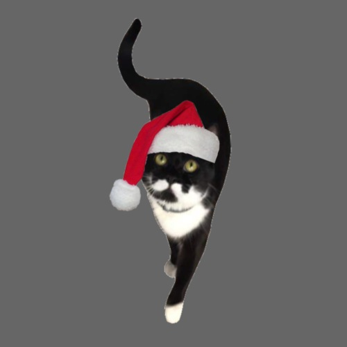Fur Christmas with Moustache Kitty - T-shirt Premium Homme