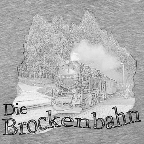 brockenbahn dampflok schierke 2