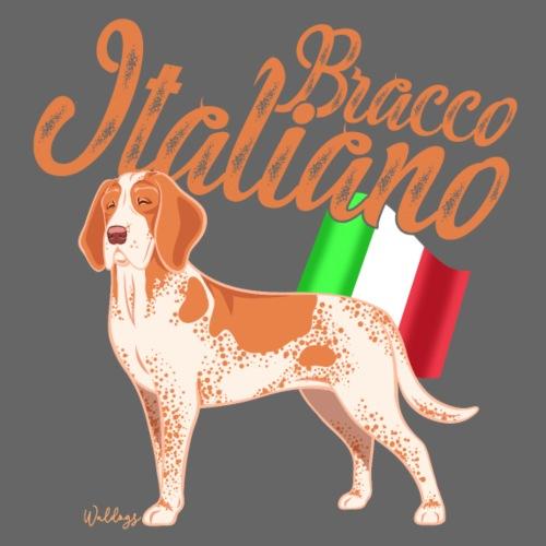 Bracco Italiano Flag 2 - Miesten premium t-paita