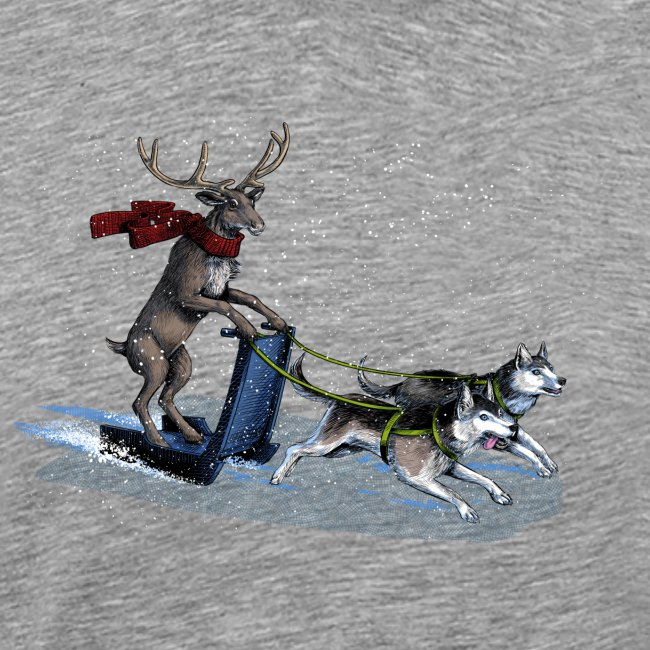 Reindeer sledge pulled by Huskies