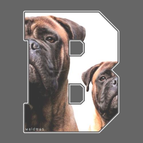 Bullmastiff B - Miesten premium t-paita