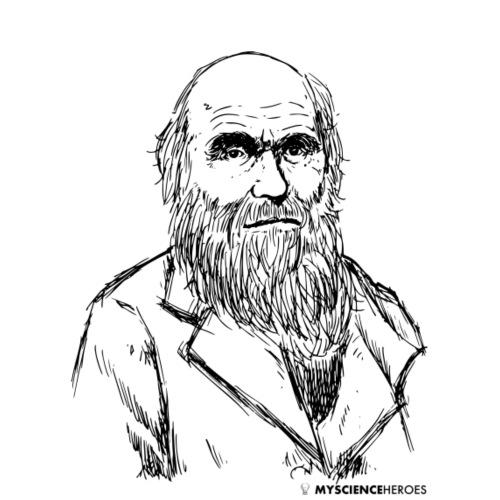 The Darwin - Männer Premium T-Shirt