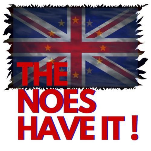 The Noes have it ! - Brexit - Männer Premium T-Shirt