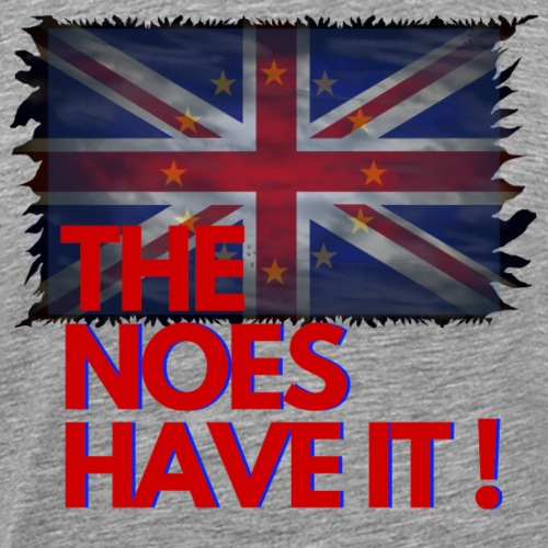 The Noes have it ! - Brexit - Männer Premium T-Shirt