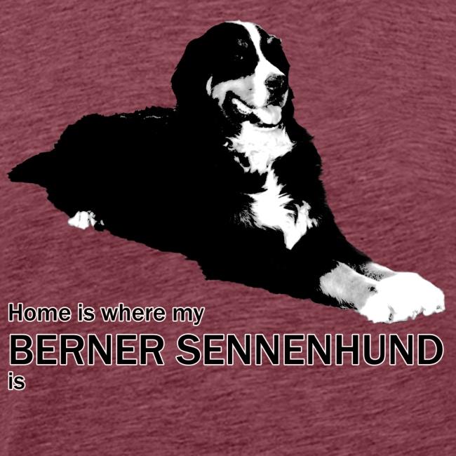Home is where my Berner Sennenhund is