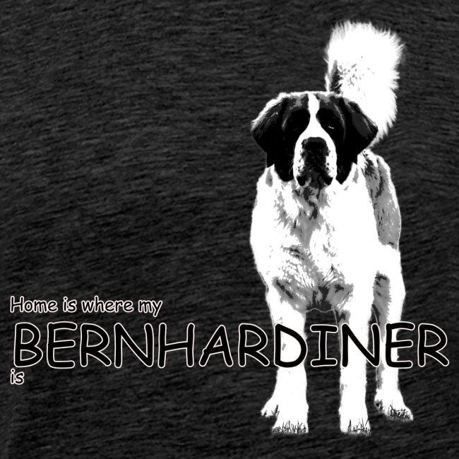 Home is where my Bernhardiner is