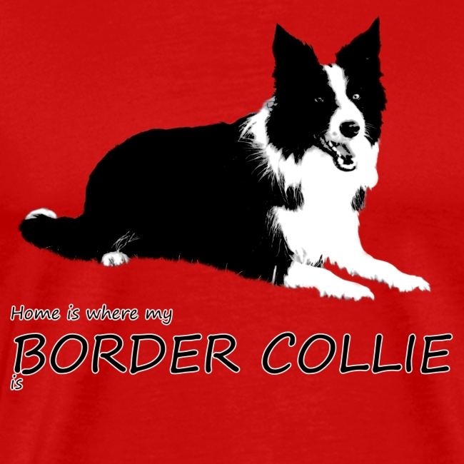 Home is where my Border Collie is