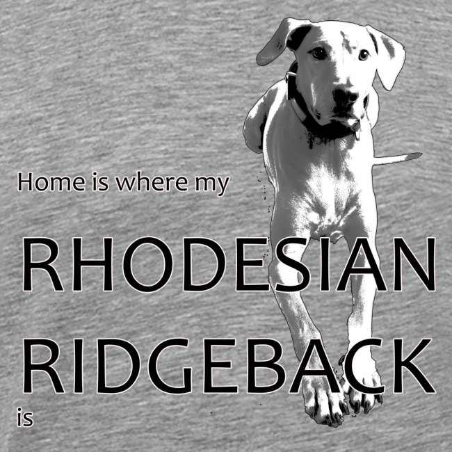 Home is where my Rhodesian Ridgeback is