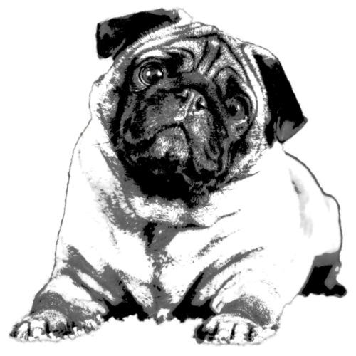 Pug - Männer Premium T-Shirt