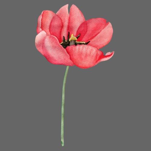 Red Tulip Watercolor - Männer Premium T-Shirt