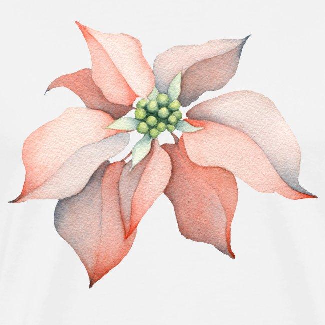 Christmas Flower watercolor