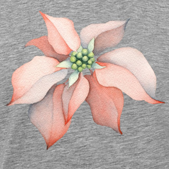 Christmas Flower watercolor