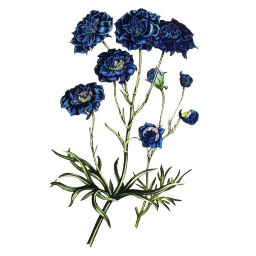 Blue Flowers - Männer Premium T-Shirt
