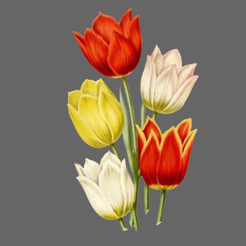 Nostalgic Tulips - Männer Premium T-Shirt
