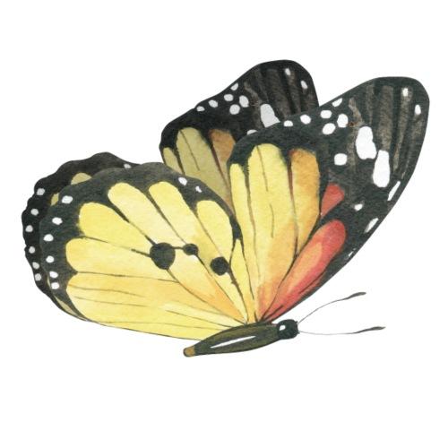 Yellow Butterfly Watercolor - Männer Premium T-Shirt