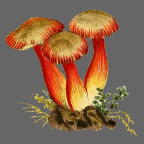 Rote Pilze - Männer Premium T-Shirt