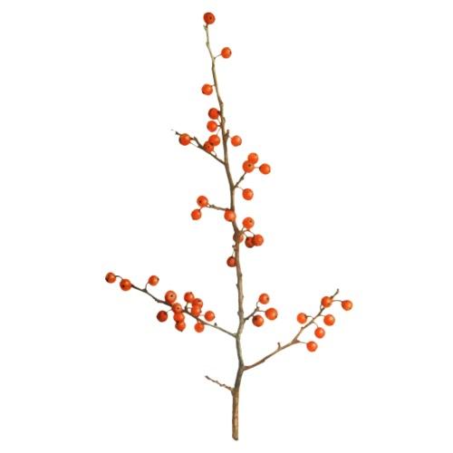Rote Beeren am Zweig - Männer Premium T-Shirt