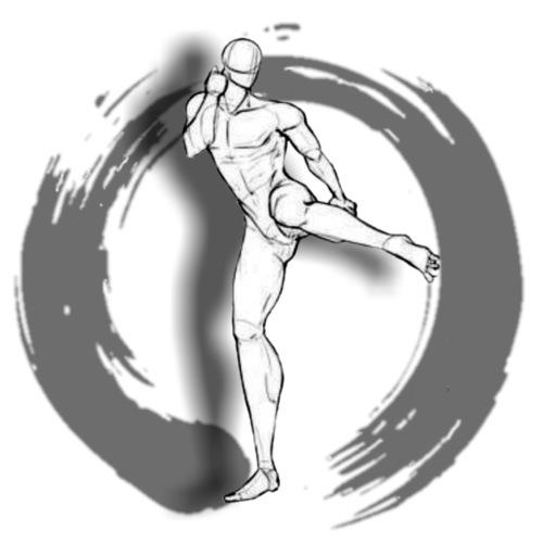 Artes marciales 6 - Camiseta premium hombre