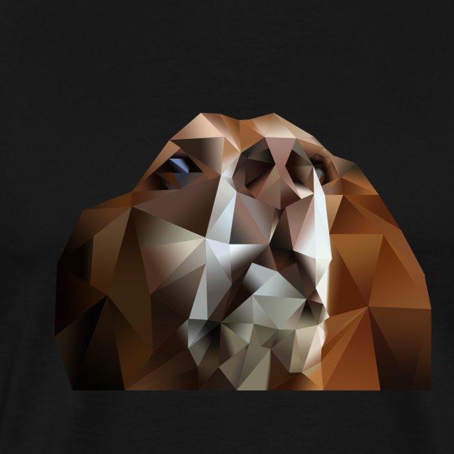Beagle Polygon