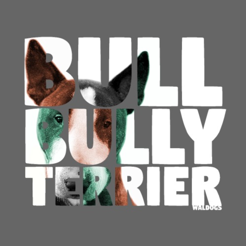 NASSU Bullterrier - Miesten premium t-paita