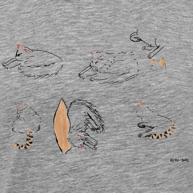 Cat Company