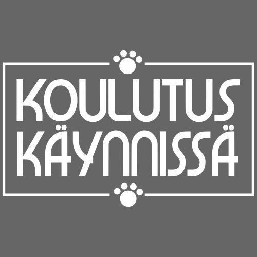 Koulutus Käynnissä - Miesten premium t-paita